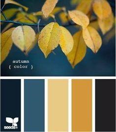 Color palette,