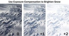 Boost Your Photography: How to Take Better Snow Photographs