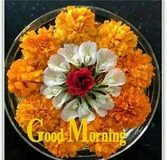 Good Morning Msg, Good Morning Picture, Good Morning Flowers, Good Morning Greetings, Morning Pictures, Morning Wish, Good Morning Images, Good Morning Quotes, Beautiful Love Pictures