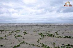 Praia da Ilha do Desejo, Una (BA)