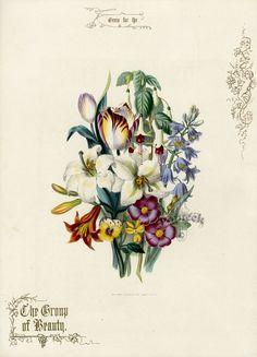 Gallery.ru / Jean Louis Prevost (1760-1810) - 1 - tatasha
