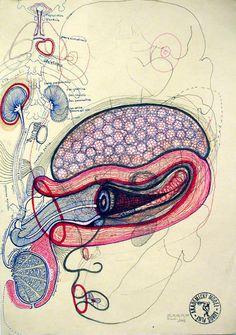 Luboš Plný   Дай зин!    Abstract is what I like.  This looks like human intestine, but it makes me think more deeply.