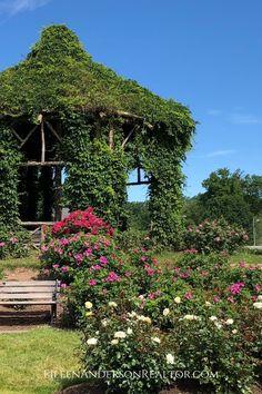 Patio Pergola Design Ideas Garden Ideas and Landscape Design. Stone Patio Designs, Design Patio, Pergola Designs, Garden Landscape Design, Garden Landscaping, Big Leaf Plants, Full Sun Garden, Patio Plans, Garden Pictures