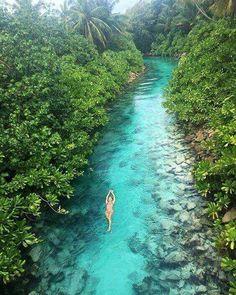 More Than 44 A Hidden Stream Of Water In The Maldives una corriente de agua oculta en las maldivas ein versteckter strom des wassers in den malediven un flusso nascosto di acqua alle maldive Vacation Places, Dream Vacations, Vacation Spots, Vacation Humor, Vacation Travel, Vacation Ideas, Visit Maldives, Maldives Travel, The Maldives