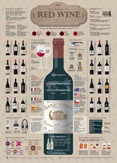 1801 Red Wine Infographic Poster on Behance Chateau Margaux Wine, Wine Chateau, Wein Poster, Wine Infographic, Wine Terms, Wine Facts, Chateauneuf Du Pape, Wine Guide, In Vino Veritas