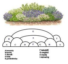 Plan Create your own version of the RHS Feel Good Garden - New ideas Flower Garden Plans, Garden Design Plans, Garden Landscape Design, Cottage Garden Design, Back Gardens, Small Gardens, Outdoor Gardens, Outdoor Landscaping, Front Yard Landscaping