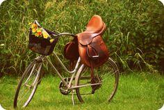 Saddled bicycle