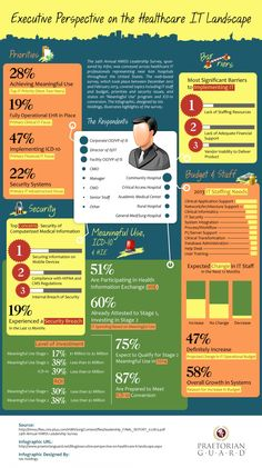 Executive Perspective on the Healthcare IT Landscape Infographic