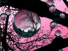 Bubbles #pink