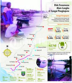 Efek Fenomena Alam Langka di Sungai Pangkajene