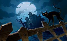 Black Cat & Haunted House
