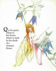 Fairy Queen Alphabet book - by Fanny Y Cory Illustrations, Book Illustration, Botanical Illustration, Pomes, Elves And Fairies, Fairy Pictures, Vintage Fairies, Flower Fairies, Fairy Art