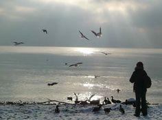 Winterfreuden am Bodensee (Lake Constance)