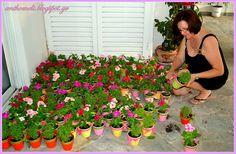 Ανθομέλι: Οι Μπομπονιέρες για τη Βάπτιση (Γλαστράκια με Λουλούδια)  Pots