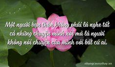 Một người bạn thân không phải là nghe tất cả những chuyện mình nói mà là người không nói chuyện của mình với bất cứ ai. Plants, Planters, Plant, Planting, Planets
