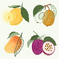 how do html color codes work Peach Wallpaper, Pineapple Wallpaper, Framed Wallpaper, Agriculture, Watermelon Designs, Doodle Frames, Fruit Packaging, Fruit Illustration, Pineapple Design