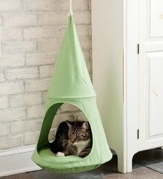 """OMG, some real cool ideas here! This amazing """"cuddle pod"""": 