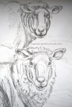 From my scribbling pencil lines, emerges some sheep drawings that will… Animal Drawings, Art Drawings, Sheep Drawing, Sheep Face, Sheep Paintings, Sheep And Lamb, Polychromos, Drawing Sketches, Sketching