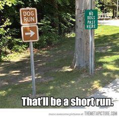 Short run…