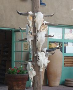 Santa Fe, New Mexico---which I knew where these were---I'd buy one...........