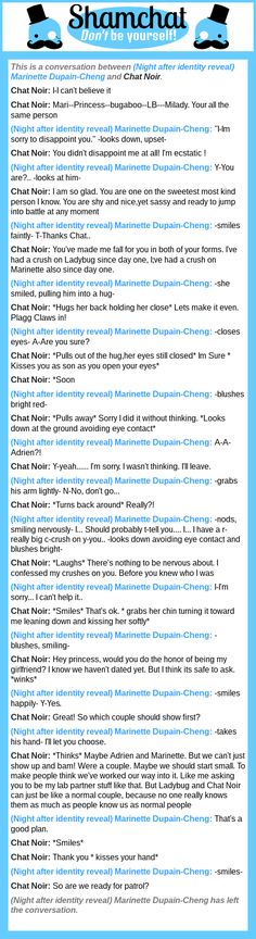 A conversation between Chat Noir and (Night after identity reveal) Marinette Dupain-Cheng
