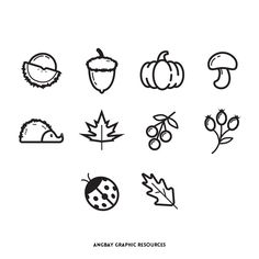 Autumn Season Icon Set
