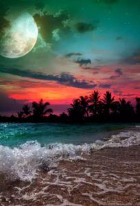 photography - moon, sunset, ocean gorgeous