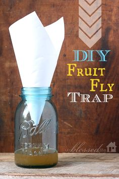 Get rid of fruit flies.. DIY Fruit Fly Trap..and it works!