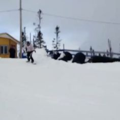 #whitehills #snowboarding #first #cold #winter #newfoundland #canada