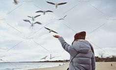 Freedom at the Sea.  Freedom at the Sea - People Girl at the sea with seagulls around by Pro.Motion on @creativemarket  sea, freedom, woman, happy, people, beach, summer, lifestyle, silhouette, sky, fun, beautiful, person, vacation, ocean, sun, nature, happiness, water, young, outdoor, travel, man, free, girl, active, open