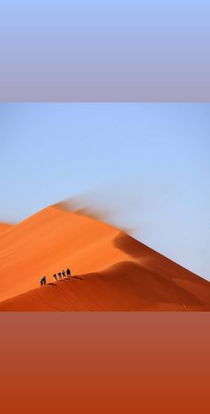 Travel with confidence ~= ))))))))))))))===========)))))))))))) Hi guys. We are Berber Tuareg team and a local travel Agency in Morocco . How are everyone? Hope everyone doing great 👍😁. Here is Morocco 🇲🇦 #moroccoobjectif. If you looking for holiday..vacation in Morocco 🇲🇦 some day. Please contact us. Morocco objectif We offering a local tour to Luxury ! We ready to give all the good information and reasonable price. Thank you for your interest here is our click Desert Tour, Local Tour, The Dunes, Travel Agency, Casablanca, Marrakech, Day Trips, Trekking, Morocco
