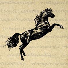 Antique Horse Graphic Printable Download Image Leaping Horse Digital Vintage Clip Art Jpg Png Eps 18x18 HQ 300dpi No.4060 @ vintageretroantique.etsy.com #DigitalArt #Printable #Art #VintageRetroAntique #Digital #Clipart #Download