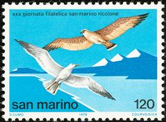 Slender-billed Gull stamps - mainly images - gallery format