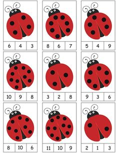 ladybug-counting-activity.jpg 464×600 pikseliä