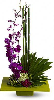 Zen Artistry - A kiwi-colored square dish presents an arrangement of purple dendrobium orchids, green carnations, dark pink Sweet William, green hypericum, an emerald palm leaf, bamboo-like equisetum, galax leaves, and sheet moss.