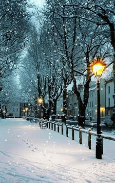 Charming Photos of Winter Scenery Winter Magic, Winter Snow, Winter Time, Summer Time, Foto Gift, Foto Picture, Winter Scenery, Snow Scenes, Winter Beauty