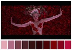 Cinema Palettes: Color palettes from famous movies - American Beauty