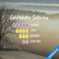 doterra Cold Winter Saturday - Essential Oil Diffuser Blend Do I Really Need A Concrete Grinder Ther Clary Sage Essential Oil, Essential Oil Uses, Doterra Essential Oils, Essential Oil Combinations, Essential Oil Diffuser Blends, Aromatherapy Oils, Young Living, Wells, Remedies