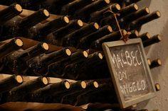 Bodega familiar y artesanal que forma parte de los Caminos del Vino.