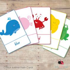 Colour Animal Flash Cards 5 x 7 inch by BUSYLITTLEBUGSshop on Etsy, $5.95