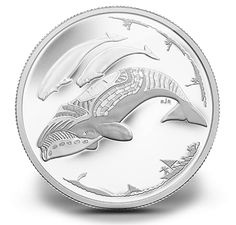 1/4 oz. silver coin by the Royal Canadian mint.   •   Your striking silver proof 3-dollar coin commemorates the centennial of the First Canadian Arctic Expedition by bringing a contemporary perspective to life in the Arctic.   •   Your coin's design comes from Inuit artist Tim Pitsiulak, of Kinngait (Cape Dorset), Nunavut. Tim Pitsiulak is also the nephew of Kenojuak Ashevak, who was arguably the most famous Inuit artist in the world.