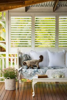 Blinds & Shutters Versus Curtains – How to Choose The Best Blinds! Blinds & Shutters Versus Curtains – How to Choose The Best Blinds! Outdoor Shutters, Outdoor Blinds, Wooden Shutters, Outdoor Rooms, Outdoor Living, Cedar Shutters, White Shutters, Curtains How To Choose, Porch Privacy