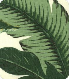This fabric would look amazing as curtains in the dining room!  Swaying Palms