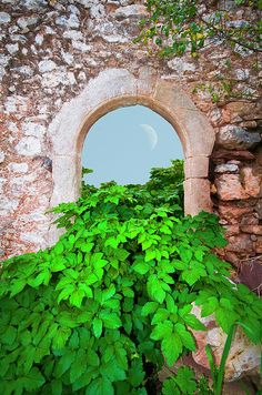 beautiful arched opening