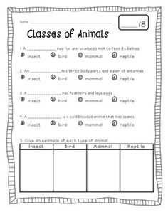 animal classification activity worksheets animal classification activities and animals. Black Bedroom Furniture Sets. Home Design Ideas