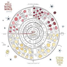 Vino Sans Snobbery: A Charming Illustrated Scratch-and-Sniff Guide to Becoming a Wine Expert | Brain Pickings