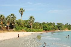Top 10 things to do in The Gambia for first-time visitors