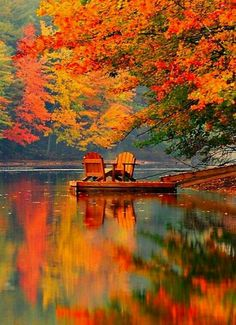 Beautiful fall colors by the lake All Nature, Beauty Of Nature, Autumn Nature, Nature Pics, Jolie Photo, Pretty Pictures, Beautiful Nature Pictures, Amazing Pictures, The Great Outdoors