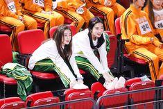 "WONDERS NEVER CEASE on Twitter: ""넘 늦어서 몇장 더ㅜㅜ 지각생ㅜ.ㅜㅜㅜ #HAPPYIRENEDAY #Causeltsyouirene… "" Seulgi, Kpop Girl Groups, Kpop Girls, Redvelvet Kpop, Park Sooyoung, Kim Yerim, Thing 1, Red Velvet Irene, Queen Bees"