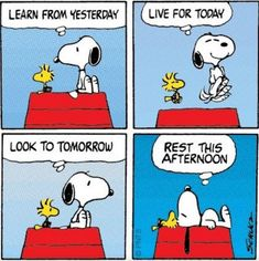 Tri Cities On A Dime: LAUGH FOR THE DAY - THE SNOOPY AND WOODSTOCK LIFE ...